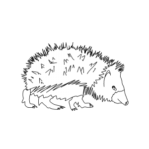faune et flore Pyrénées