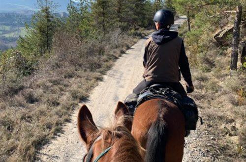 Pyreneeën | Outdoor Activiteiten | Paardrijden